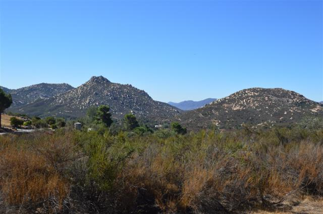 10.64 Ac. Bratton Valley Rd. #3, Jamul, CA 91935 (#180050822) :: The Yarbrough Group