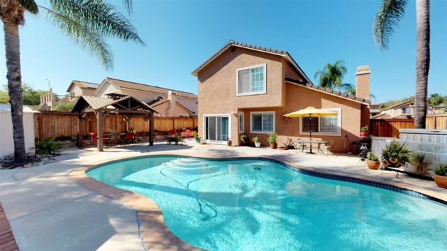 10109 Country Scenes Ct, Santee, CA 92071 (#180051459) :: eXp Realty of California Inc.