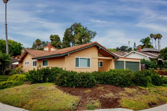 409 Dell Court, Solana Beach, CA 92075 (#180053196) :: Keller Williams - Triolo Realty Group