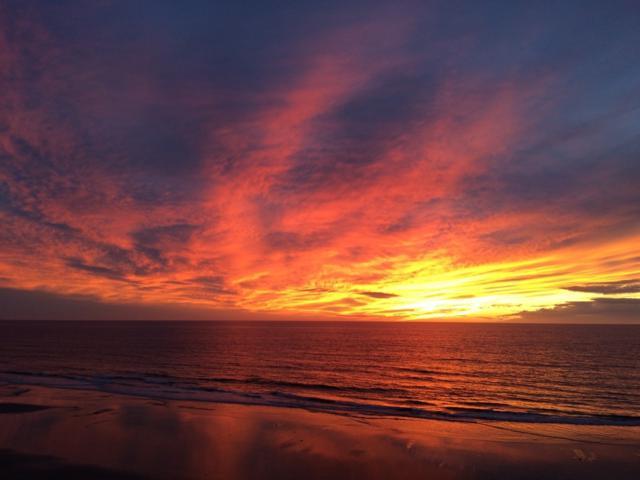 561 S Sierra #36, Solana Beach, CA 92075 (#180054456) :: Keller Williams - Triolo Realty Group