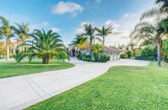 14752 Rancho Santa Fe Farms Rd, Rancho Santa Fe, CA 92067 (#180056888) :: Neuman & Neuman Real Estate Inc.