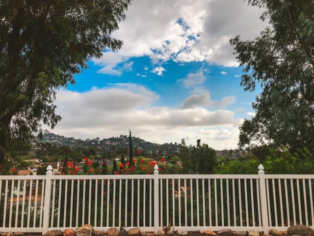 1787 Grossmont View Drive, El Cajon, CA 92020 (#180057464) :: Steele Canyon Realty