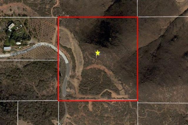 20860 Wild Willow Hollow #00, Escondido, CA 92029 (#180064454) :: Farland Realty