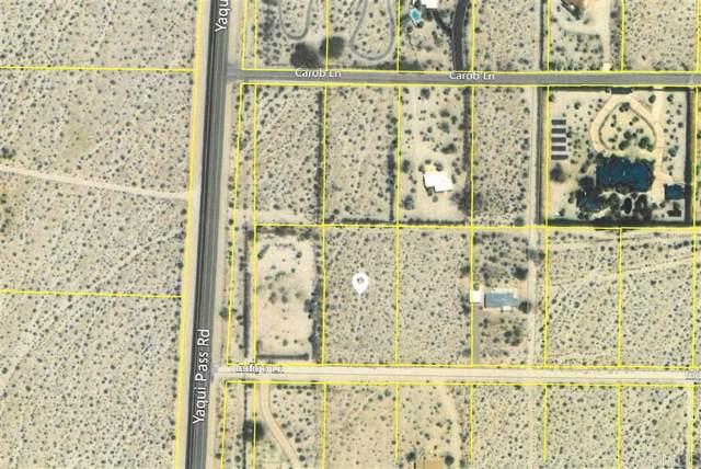 Indigo Lane #11, Borrego Springs, CA 92004 (#190001732) :: Neuman & Neuman Real Estate Inc.