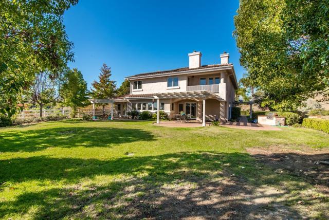 2863 Calle Rancho Vista, Encinitas, CA 92024 (#190003183) :: Whissel Realty