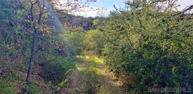 19320010 Bobcat Trail #0, Santa Ysabel, CA 92070 (#190004441) :: Whissel Realty