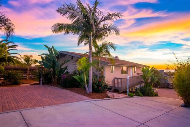 1624 Gascony, Encinitas, CA 92024 (#190005343) :: Neuman & Neuman Real Estate Inc.