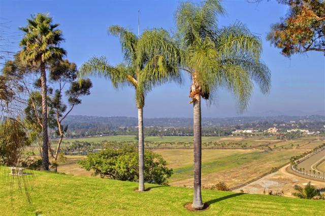 5355 Caminito Providencia, Rancho Santa Fe, CA 92067 (#190008157) :: The Marelly Group   Compass