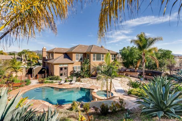 750 Agua Vista Dr., Chula Vista, CA 91914 (#190009636) :: Cane Real Estate
