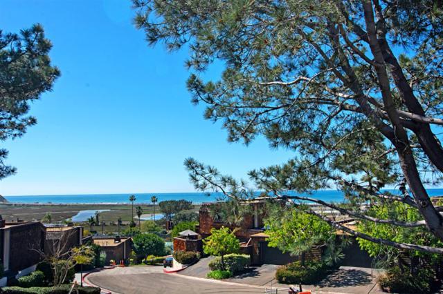 12946 Caminito De Las Olas, Del Mar, CA 92014 (#190012589) :: Neuman & Neuman Real Estate Inc.