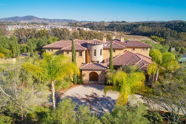 13425 Caminito Mendiola, San Diego, CA 92130 (#190012692) :: Coldwell Banker Residential Brokerage