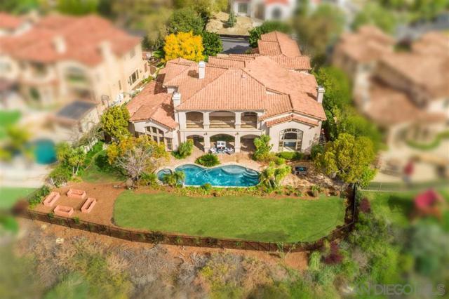 5743 Meadows Del Mar, San Diego, CA 92130 (#190013770) :: Coldwell Banker Residential Brokerage