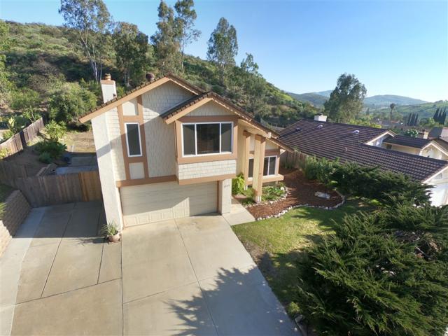 3533 Via Palma, La Mesa, CA 91941 (#190014392) :: Neuman & Neuman Real Estate Inc.
