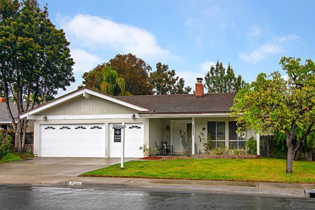 13387 Barbados, Del Mar, CA 92014 (#190014428) :: Neuman & Neuman Real Estate Inc.