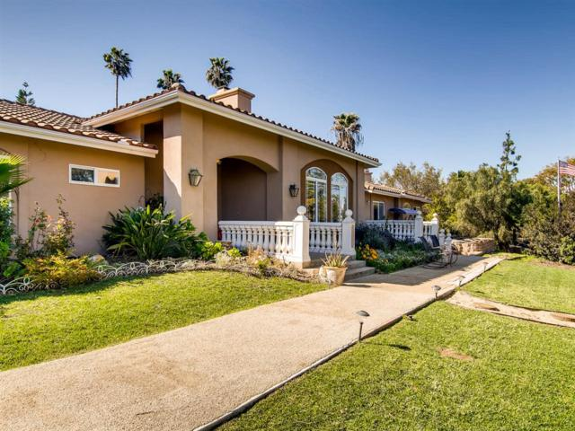 197 Morro Hills Rd, Fallbrook, CA 92028 (#190015931) :: Whissel Realty