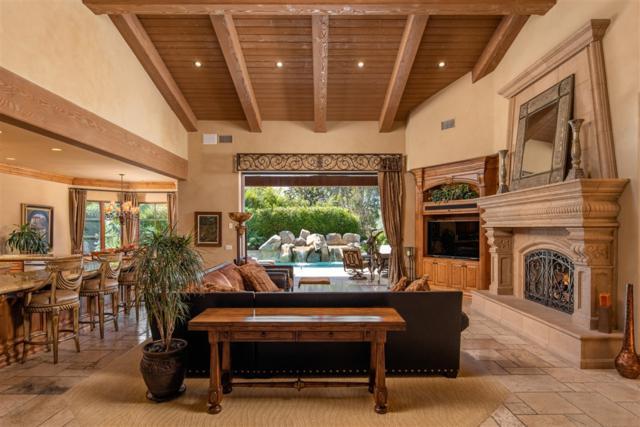 14175 Rancho Vista Bend, San Diego, CA 92130 (#190016925) :: Whissel Realty