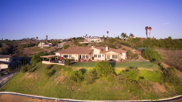 5605 Hidden Grove Way, Bonsall, CA 92003 (#190017035) :: Neuman & Neuman Real Estate Inc.