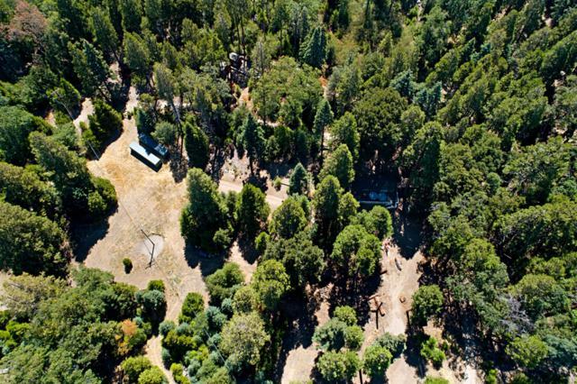 33125 Canfield Road, Palomar Mountain, CA 92060 (#190017230) :: Neuman & Neuman Real Estate Inc.