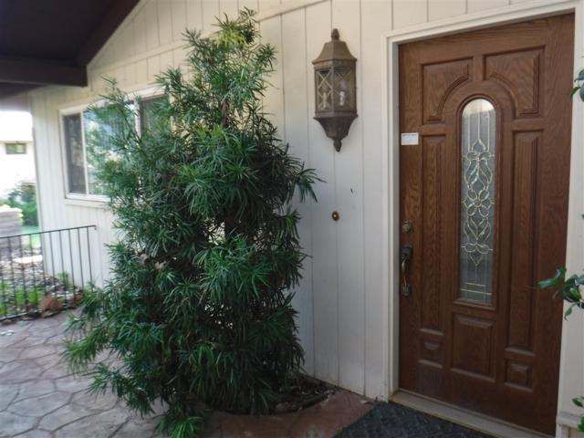 15409 Happy Hollow Dr, Pauma Valley, CA 92061 (#190019620) :: Whissel Realty