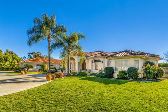 2533 Sweetgrass Ct, Bonsall, CA 92003 (#190021810) :: Neuman & Neuman Real Estate Inc.
