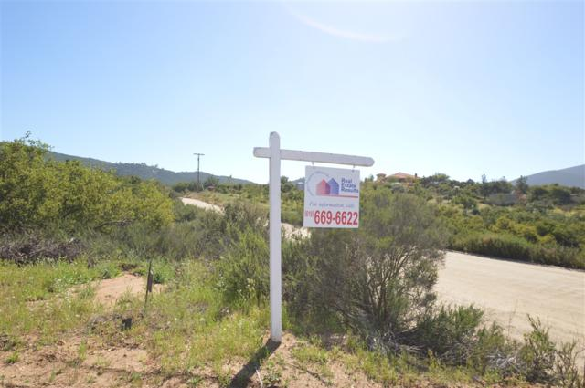 5 Acres Hilary Dr #29, Jamul, CA 91935 (#190021872) :: Coldwell Banker Residential Brokerage
