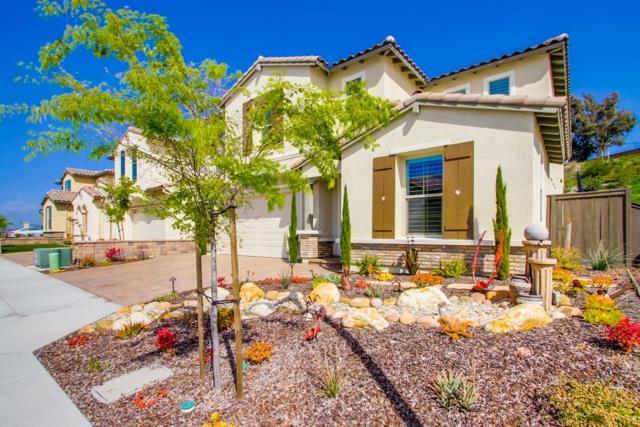 449 Cota Ln, Vista, CA 92083 (#190021905) :: Farland Realty