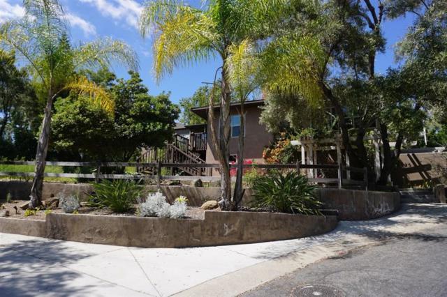 8720 Mariposa St, La Mesa, CA 91941 (#190022060) :: Whissel Realty