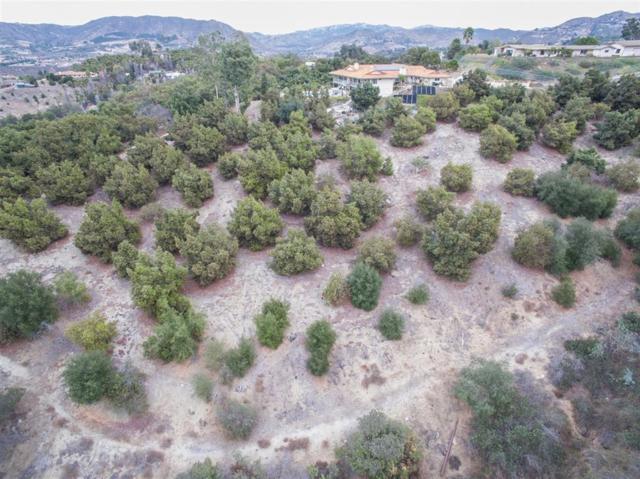 1218 Knoll Park Ln #1, Fallbrook, CA 92028 (#190022136) :: Neuman & Neuman Real Estate Inc.