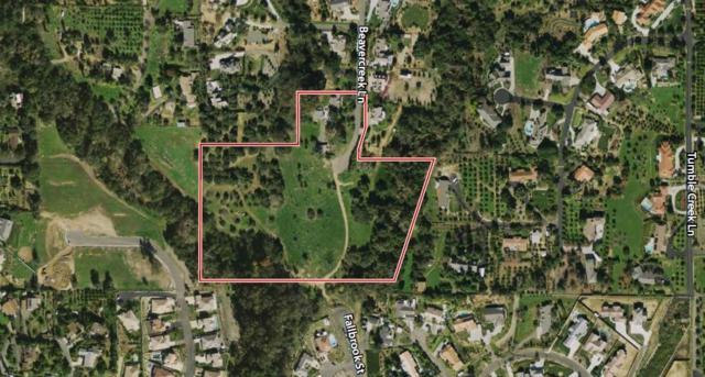 495 Beavercreek Ln, Fallbrook, CA 92028 (#190022257) :: Neuman & Neuman Real Estate Inc.
