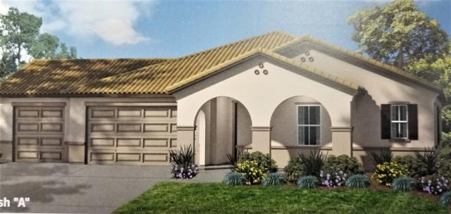 541 Bridle Place, Escondido, CA 92026 (#190023343) :: Compass