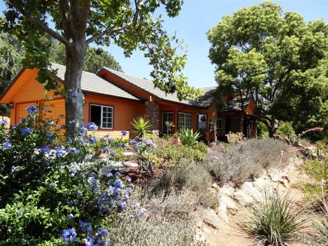 19079 Paradise Mountain Rd, Valley Center, CA 92082 (#190023359) :: Farland Realty