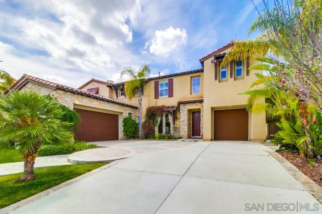 1028 Mountain Ash Avenue, Chula Vista, CA 91914 (#190023522) :: Farland Realty