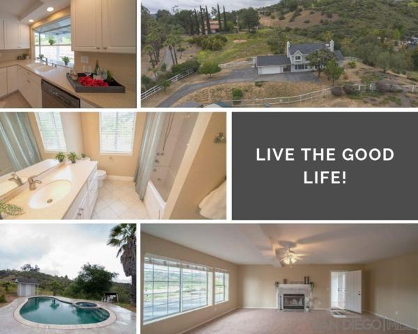 12234 Betsworth Rd, Valley Center, CA 92082 (#190025503) :: Kim Meeker Realty Group