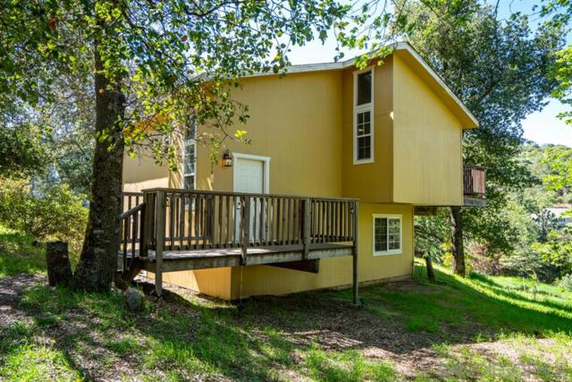 2610 Salton Vista Dr, Julian, CA 92036 (#190025672) :: Neuman & Neuman Real Estate Inc.