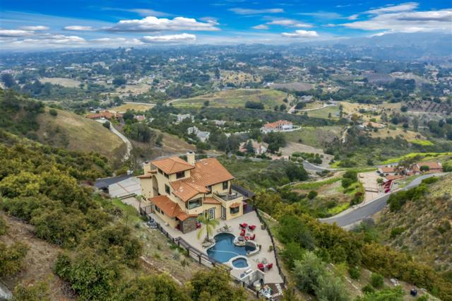 3223 Red Mountain Heights Dr, Fallbrook, CA 92028 (#190026450) :: Whissel Realty
