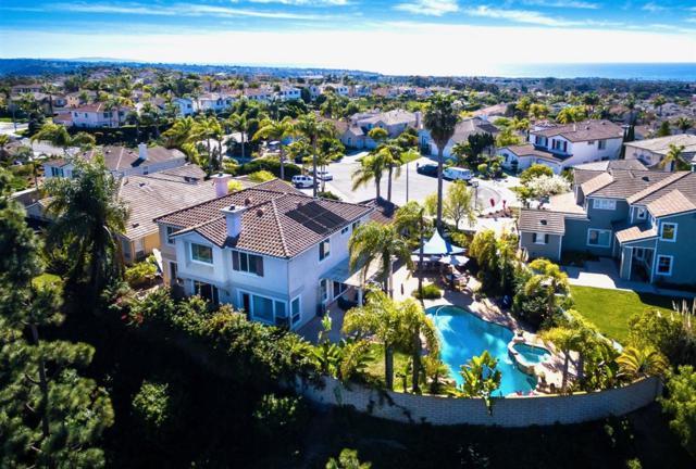 6714 Lemon Leaf Drive, Carlsbad, CA 92011 (#190027229) :: Neuman & Neuman Real Estate Inc.