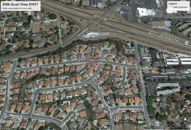 3598 Quail View St, Spring Valley, CA 91977 (#190029573) :: Neuman & Neuman Real Estate Inc.