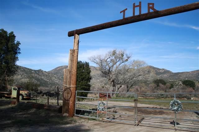 3757 La Posta Truck Trail, Pine Valley, CA 91962 (#190030904) :: Neuman & Neuman Real Estate Inc.
