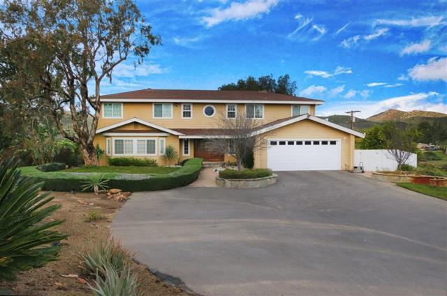 14435 Highway 67, Lakeside, CA 92040 (#190030924) :: Coldwell Banker Residential Brokerage
