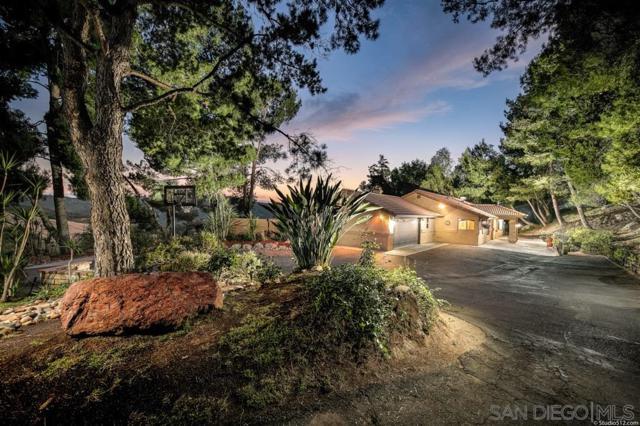 29036 Miller Road, Valley Center, CA 92082 (#190032488) :: Allison James Estates and Homes