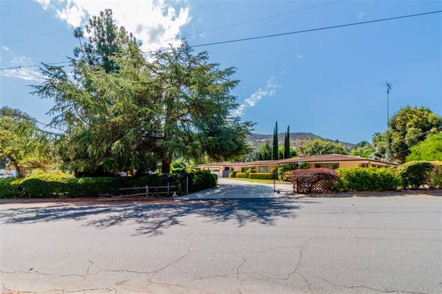 12815 Indian Trail Rd, Poway, CA 92064 (#190034729) :: Neuman & Neuman Real Estate Inc.