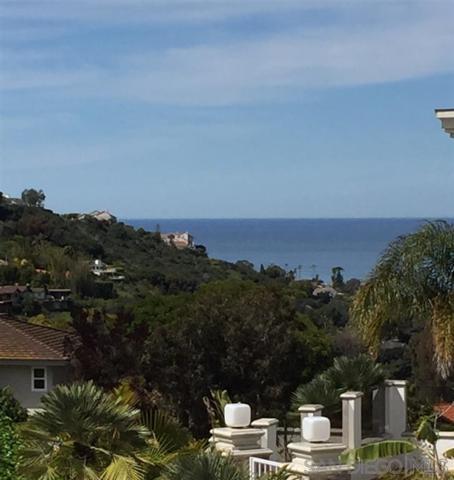 7980 Via Capri, La Jolla, CA 92037 (#190037136) :: Neuman & Neuman Real Estate Inc.
