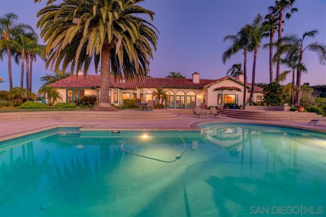 30345 Via Maria Elena, Bonsall, CA 92003 (#190039327) :: Neuman & Neuman Real Estate Inc.