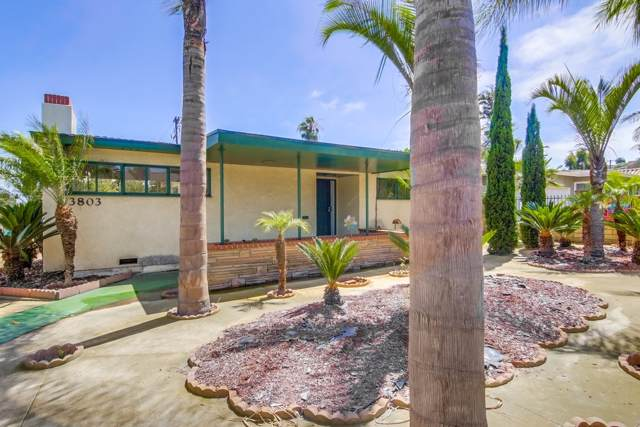 3803 Centraloma Drive, San Diego, CA 92107 (#190044628) :: Coldwell Banker Residential Brokerage