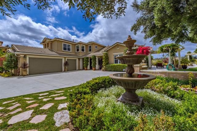 401 Highland Oaks Ln, Fallbrook, CA 92028 (#190044989) :: Neuman & Neuman Real Estate Inc.