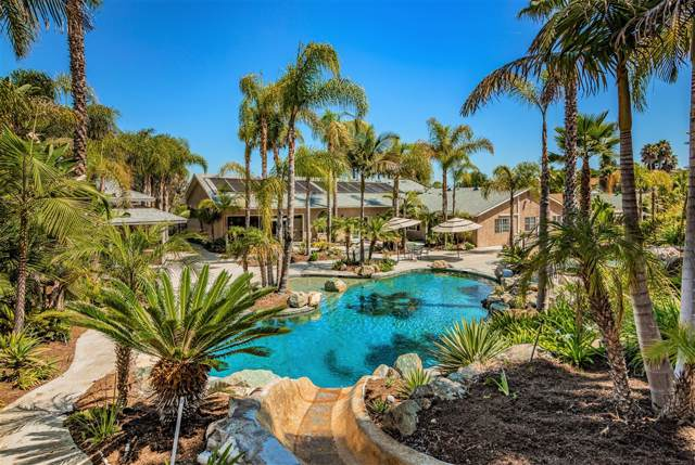 4435 Summer Dr, Oceanside, CA 92056 (#190046735) :: Allison James Estates and Homes