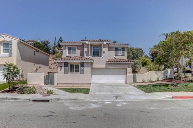 1529 Marble Canyon Way, Chula Vista, CA 91915 (#190047106) :: Allison James Estates and Homes