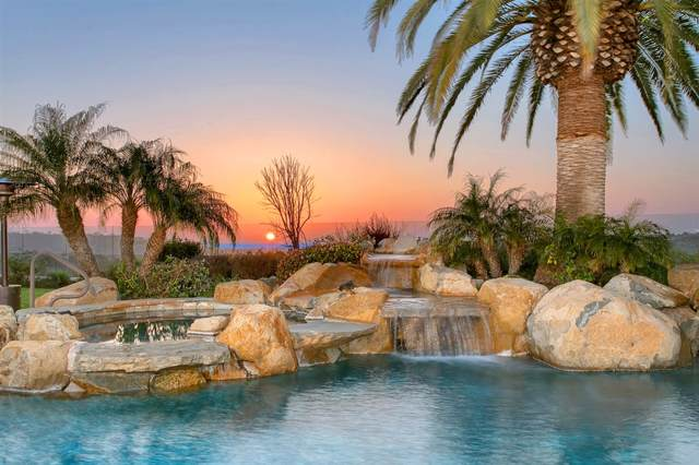 4532 Rancho Del Mar Trail, San Diego, CA 92130 (#190047791) :: Allison James Estates and Homes
