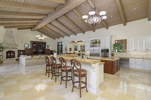 14050 Rancho Vista Bend, San Diego, CA 92130 (#190048561) :: Allison James Estates and Homes