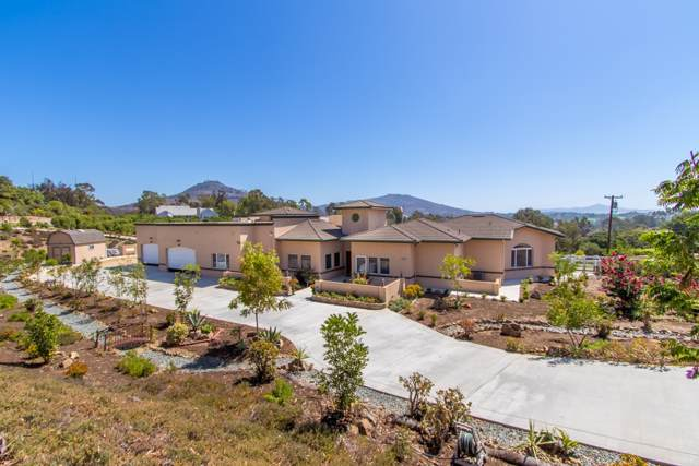 3701 Fortuna Ranch Rd, Encinitas, CA 92024 (#190050846) :: Whissel Realty